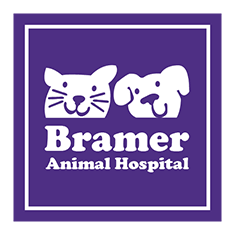 Bramer Animal Hospital - Evanston, IL
