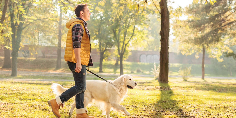 Man walking dog in Evanston, IL