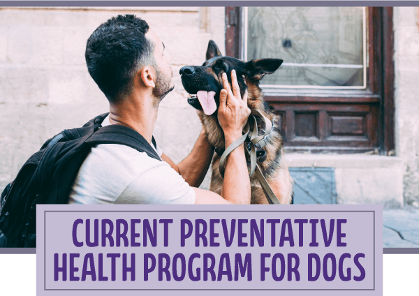 Current preventative health program for dogs